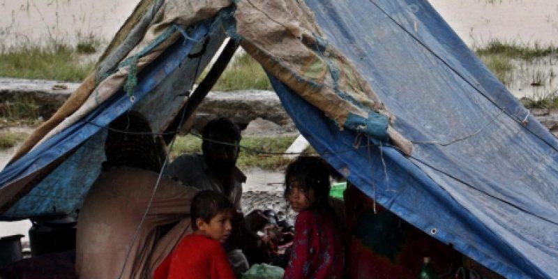 El presidente del CERMI, señala que desastres naturales o guerras generan discapacidades en Pakistán