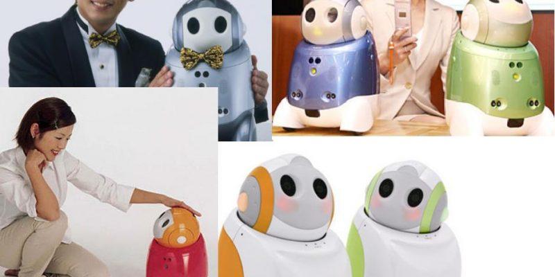 Papero – Robot de asistencia para niños, ancianos y discapacitados