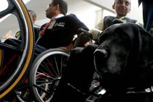 México – El 98% de las personas con discapacidad no cuenta con empleo