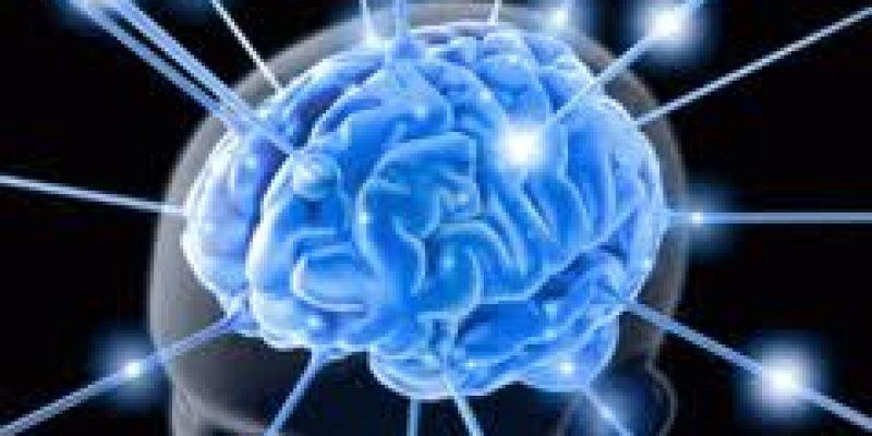 Ictus – Trastorno de la circulación cerebral, causante de discapacidad y muerte