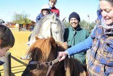 España – Terapia con animales ayuda a discapacitados a superar las barreras