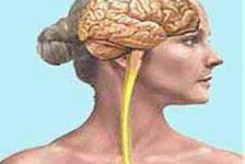 ELA-Manual de cuidados del paciente con esclerosis lateral amiotrófica