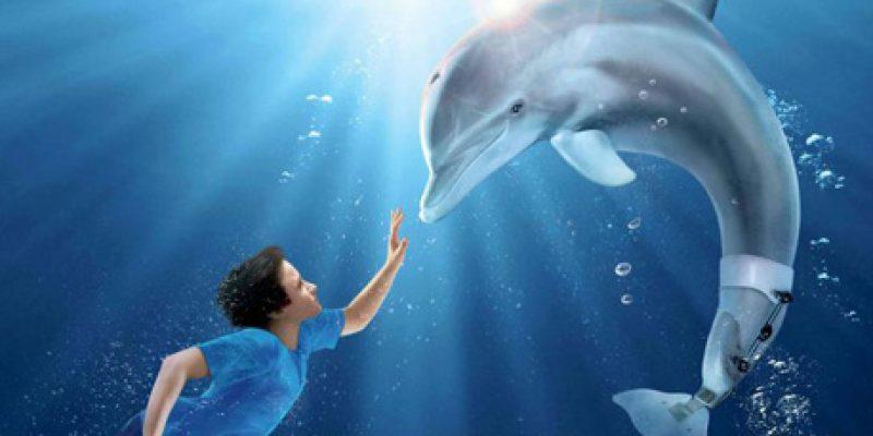 Cine y discapacidad Winter El Delfín sin cola