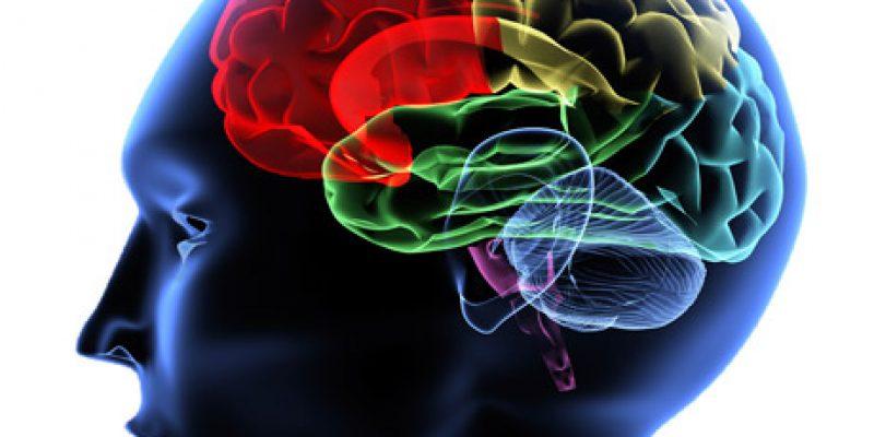 Daño Cerebral Sobrevenido acercamiento epidemiológico en España