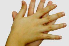 Lengua de signos española propuestas curriculares