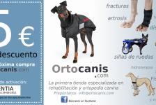 Discapacidad animal férulas para perros