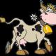 Canción infantil en lengua de señas, Señora Vaca