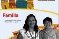 El niño con discapacidad guía para familias