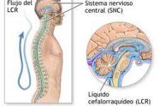 Esclerosis múltiple investigación y esperanza