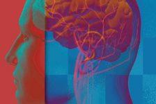 Enfermedad cerebrovascular estudios España