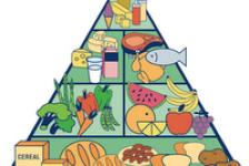 Lesión medular y nutrición consejos útiles