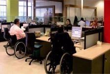 Empleo discapacidad gestión y política