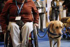 Día internacional de la persona con discapacidad 2012