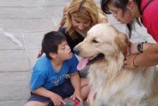 Discapacidad infantil y terapia con animales