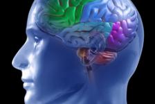 Esclerosis Múltiple y problemas de cognición