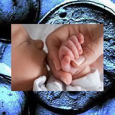 Células madre y su impacto en la discapacidad