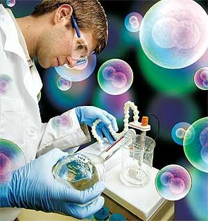 Células madre definición tipos y usos
