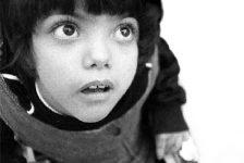 Daño cerebral y trastorno del comportamiento