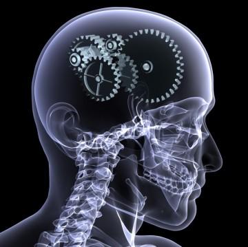 Esclerosis Múltiple alteraciones cognitivas y vida diaria