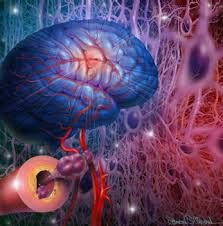 Enfermedad cerebrovascular factores de riesgo tratamiento y rehabilitación