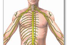 Esclerosis Múltiple tratamientos naturales y paliativos