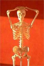 Osteoporosis 10 mitos que debes conocer