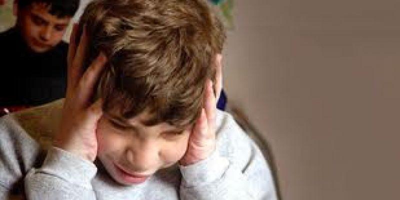 Trastorno del Espectro Autista y estereotipias