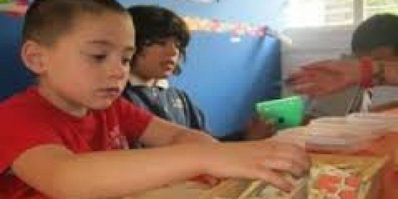 Plan de apoyo del alumnado con autismo