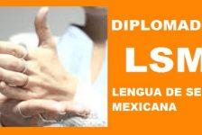 Diplomado Lengua de Señas Mexicana LSM