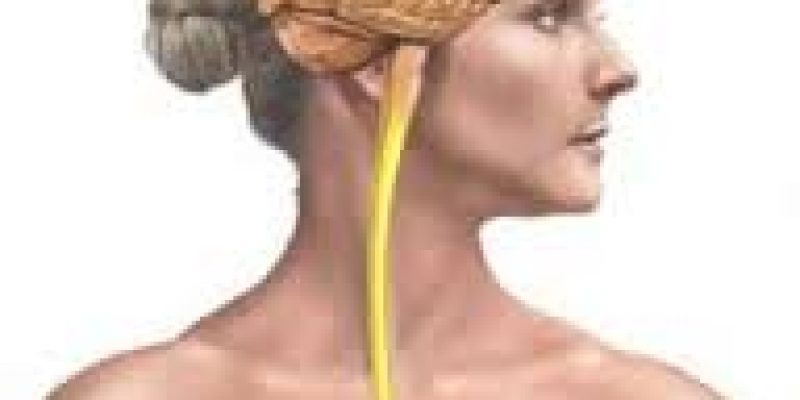 Esclerosis multiple alternativas y tratamiento natural