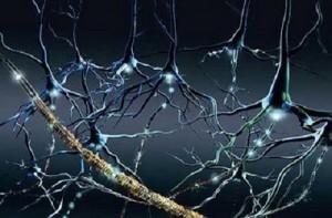 Esclerosis multiple y cuidados del paciente