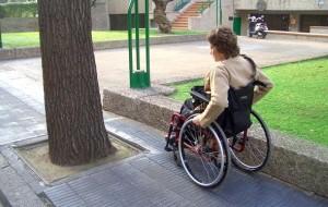 Ley discapacidad Argentina de protección integral