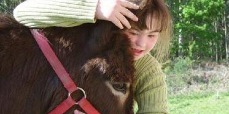 """La """"asnoterapia"""" beneficia a mas de 220 discapacitados cordobeses"""