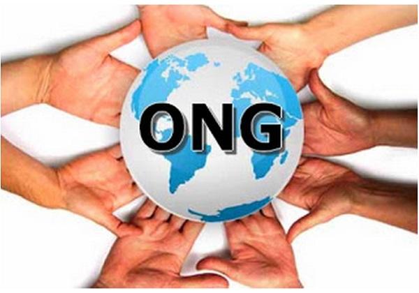 ONG Peru creacion administracion y gestion