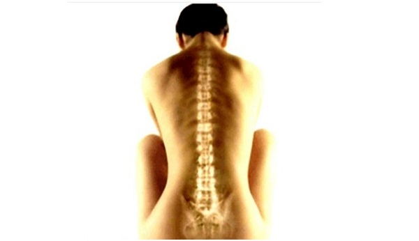 Lesion medular guia para cuidadores