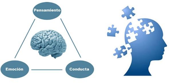 Terapia Cognitivo Conductual Para Trastornos De Ansiedad
